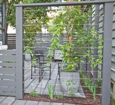 Front Garden Design Cable wires mounted between fence posts create a sturdy support for climbing plants providing privacy for your patio. Wire Trellis, Garden Trellis, Trellis Fence, Privacy Trellis, Privacy Screens, Plant Trellis, Trellis Ideas, Side Garden, Bamboo Fence