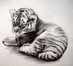 Tiger Cub by HeavyTomato