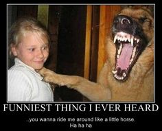 Can I ride you like a horse ? - funny pictures - funny photos - funny images - funny pics - funny quotes - funny animals @ humor