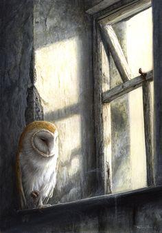 Barn owl - Painting Art by Jeremy Paul - Nature Art & Wildlife Art - Wildlife in its environment - Paul Art Owl Pictures, Beautiful Owl, Wildlife Art, British Wildlife, Nocturne, Bird Art, Oeuvre D'art, Beautiful Creatures, Pet Birds