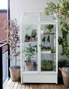 Diy Greenhouse Plans, Large Greenhouse, Build A Greenhouse, Indoor Greenhouse, Greenhouse Wedding, Greenhouse Gardening, Flower Gardening, Balcony Gardening, Wooden Greenhouses