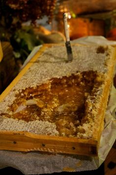 honeycomb in frame www.sandiegohoney.com #rawhoney #sandiegohoney #honey