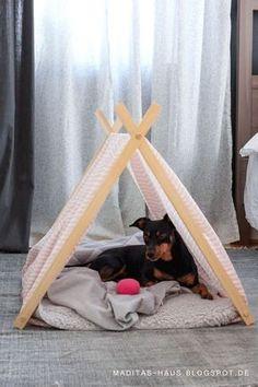 Das Hundebett. Für Herrchen und Frauchen oft ein leidiges Thema. Welche Größe? Welche Form? Mit Rand oder ohne? Was ist gut für den Hunde...
