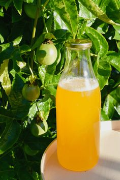 Bottle the magic taste of passionfruit with this homemade passionfruit cordial syrup. Cordial Recipe, Mojito Recipe, Winter Drinks, Summer Drinks, Summer Food, Australian Food, Australian Recipes, Passion Fruit Syrup, Passionfruit Recipes