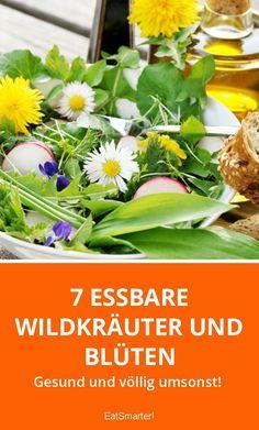 7 essbare Wildkräuter und Blüten | eatsmarter.de