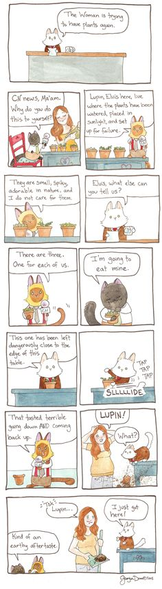 Breaking Cat News Comic Strip, December 12, 2016     on GoComics.com