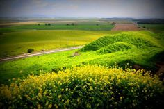 The lush Jezreel Valley in Israel.