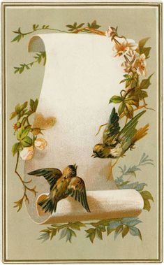 - The Graphics Fairy - This is a lovely Vintage Birds Label Image! Shown above is an Antique Ephemera piece featuring 2 pretty Birds. Decoupage Vintage, Vintage Paper, Vintage Labels, Vintage Ephemera, Vintage Postcards, Graphics Fairy, Vintage Birds, Vintage Flowers, Vintage Pictures