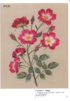 crewel embroidery kits for sale Crewel Embroidery Kits, Hand Embroidery Tutorial, Embroidery Flowers Pattern, Rose Embroidery, Japanese Embroidery, Learn Embroidery, Hand Embroidery Designs, Cross Stitch Embroidery, Embroidery Thread