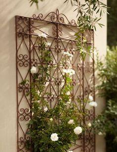 ༺♡༻ Beautiful old wrought iron door trellis for climbing Roses ༺♡༻ Wrought Iron Trellis, Metal Trellis, Rose Trellis, Wrought Iron Doors, Diy Trellis, Garden Trellis, Trellis Ideas, Balcony Garden, Metal Pergola