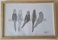 Birds fugle tegning