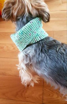 Check out this item in my Etsy shop https://www.etsy.com/uk/listing/465598571/small-mint-green-dog-snood-neck-warmer
