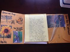 Science Interactive Notebooks: Field Journal