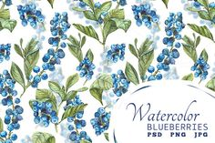 Watercolor Blueberries by Depiano on Creative Market