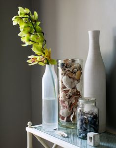 Hillary Robertson appartement Brooklyn. Coastal vignette with shells in vase and jar.
