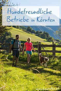 Hundefreundliche Unterkünfte zu finden ist oft nicht einfach. Doch bei uns in Kärnten wirst du nicht lange suchen müssen. Hier findest du eine Liste mit Unterkünften in Kärnten, die dich und deinen Vierbeiner herzlich willkommen heißen. Ob hundefreundliche Hotels, Ferienhäuser, Appartments oder Pensionen, hier ist für jeden etwas dabei! Damit du dich nach deiner Wanderung, Schitour oder Radtour mit Hund entspannt ausruhen kannst. Freundlich, Hotels, Mountains, Nature, Travel, Destinations, Pet Dogs, Naturaleza, Viajes