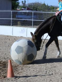 Kendra with soccer ball toy that was stolen cc8d09cf3a