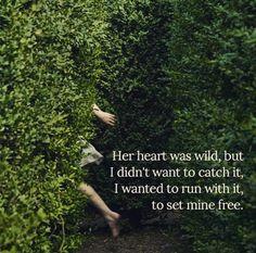 Wild by Atticus
