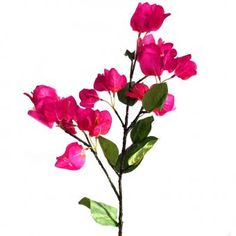This artificial Bougainvillaea Flower Stem with beautiful pink flowers measures from top to bottom and includes of flowers and leaves, the remainder is bare stem. Artificial Flowers, Pink Flowers, Leaves, Mamma Mia, Plants, Beautiful, Top, Florals, Fake Flowers