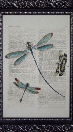 dragonfly art by French Prints