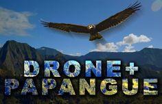 Quand un drone rencontre un papangue de la Réunion