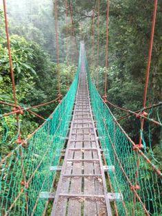 Photos of Borneo, Malaysia Rainforest Lodge, Danum Valley Conservation Area - Lodge Images - TripAdvisor