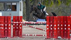 Dr. Uboh is now serving as the United States Equestrian Federation's Laboratory…