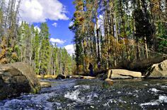 the Wise River area in Montana is a popular destination for fishermen