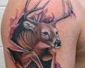 Tribal Tattoos | Polynesian Tattoos | Tattoo Ideas