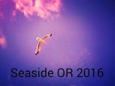 Seaside is such a beautiful place! Love this pic I took!