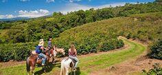 Property Grounds at Finca Rosa Blanca Coffee Plantation & Inn, Santa Barbara, Costa Rica