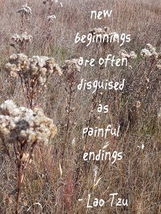 Beginnings are often disguised as painful endings.