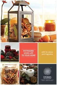 Get embraced with the color, fragrance, and elegance of Potpourri! Walk inside your home like you walk through a mysterious forest, where you feel connected to the earth, refreshed & clear. Potpourri, Mysterious, Home Goods, Fragrance, Carpet, How Are You Feeling, Earth, Concept, Make It Yourself