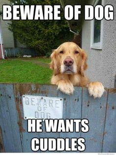 """My """"guard"""" dog.."""