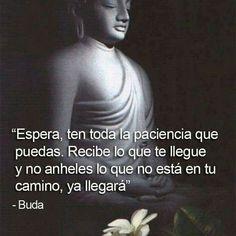 Autoayuda y Superacion Personal Words Quotes, Wise Words, Me Quotes, Motivational Quotes, Inspirational Quotes, Sayings, Buda Quotes, Phone Quotes, Dalai Lama