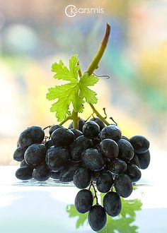 I got the best black grapes at Meijer yesterday