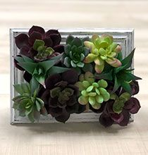 Use Dollar Tree supplies to create your own mini succulent planters and terrariums to use as spring decorations! Dollar Tree Frames, Dollar Tree Decor, Succulent Frame, Succulent Wall Art, Diy Floral Mirror, Picture Frame Wreath, Diy Candle Holders, Tree Wall Decor, Succulents Diy
