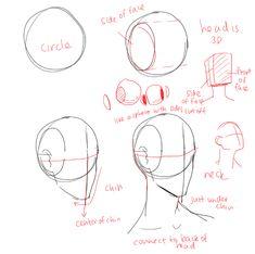Anatomy Sketches, Anatomy Art, Art Sketches, Art Drawings, Reference Manga, Art Reference Poses, Drawing Reference, Anatomy Reference, Drawing Heads
