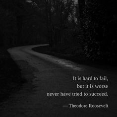 It is hard to fail, but it is worse never have tried to succeed. —Theodore Roosevelt