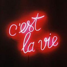 C'est la vie #neonlights Light Quotes, Custom Neon Signs, Neon Lighting, Inspirational Quotes, Lights, Red, C'est La Vie, Life Coach Quotes, Inspiring Quotes