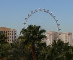 """View of the """"High Roller"""" in the daytime from The Hard Rock Hotel in Las Vegas #vegas #hrhvegas #hardrockhotellasvegas #hardrockhotelvegas #thestrip #highroller"""