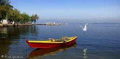 Ilha de Paquetá - Baia de Guanabara - Rio de Janeiro #Paquetá #Island #GuanabaraBay #Rio #Brasil | Flickr: Intercambio de fotos