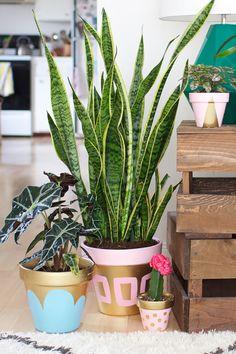 Customizando vasinhos de plantas