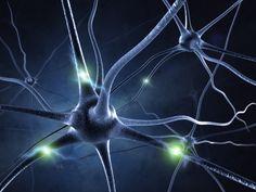 ALS Natural Treatments and The ALS Diet
