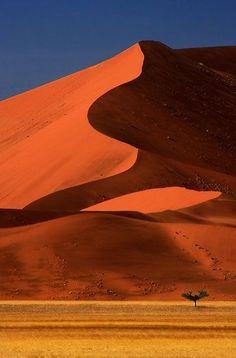 Big Dune Lone Tree, Sossusvlei, Namibia. Africa. Ik heb het niet tot boven gered. Maar wat is het mooi en heet.