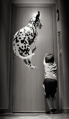 """Wooohooo, yippie! Andiamo a fare una passeggiata, andiamo a fare una passeggiata!!!"""