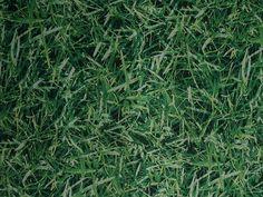 HIGHLANDS GRASS FABRIC 1.5M WIDE