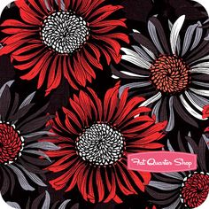 Two to Tango Black Packed Floral Yardage SKU# 60511-8 - Fat Quarter Shop