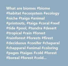 What are biomes #biome #habitat #ecosystem #ecology #niche #taiga #animal #printouts, #taiga #coral #reef #tide #pool, #tundra #desert #tropical #rain #forest #rainforest #forests #firest #deciduous #conifer #chaparal #chapparal #animal #coloring #pages #taigas #cold #forest #boreal #forest #cold #climate #forest #northern #coniferous #forest…