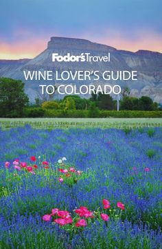 Colorado is known for the outdoors: world-class skiing, hiking, mountain biking, and rock climbing are everyday activities for residents of the Centennial State. But in recent years, #Colorado has gained accolades for its #wine country as well.